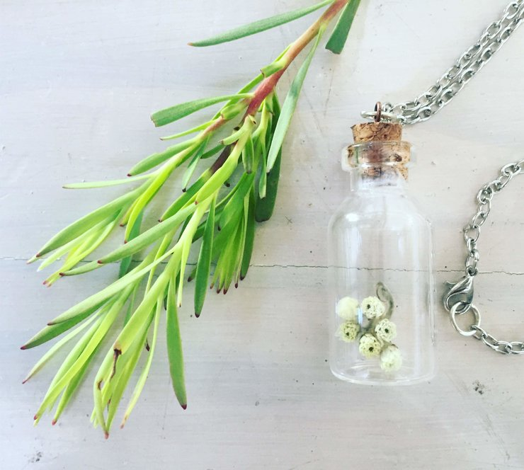 Fynbos necklace by Ancia Cornelius: Helichrysum petiolare by ART.LOVE.NATURE