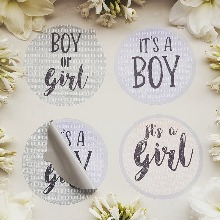 Gender Reveal Belly Sticker- GIRL by Laine Laine