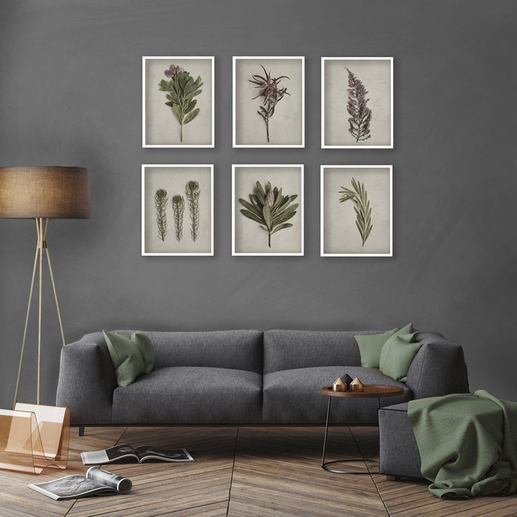 Large Fynbos Garden Gallery Wall 6x A2 Prints In White
