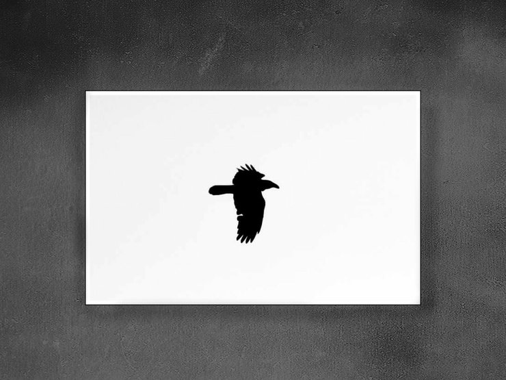 The Crow Canvas  by E.M.A Photography Design