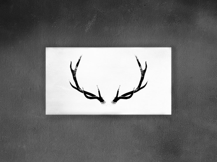 The Stag Canvas  by E.M.A Photography Design