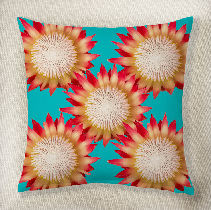 King Protea Cushion by Smith&Boyd