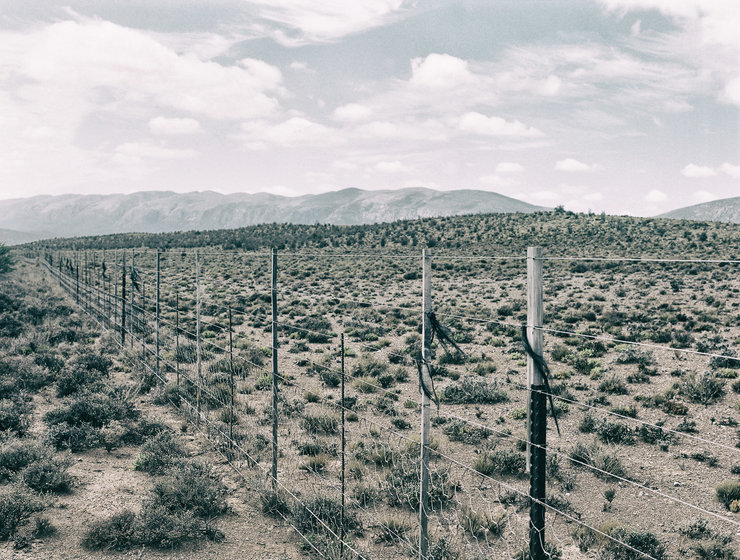 Karoo fence by Michael Middleton Photography