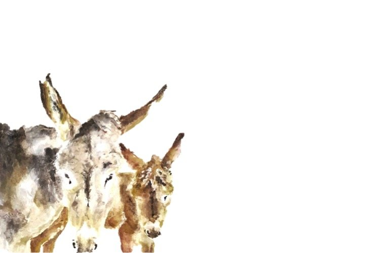 Karoo Donkeys Water Colour Print by The Pencil Project  by Meghan Maconochie