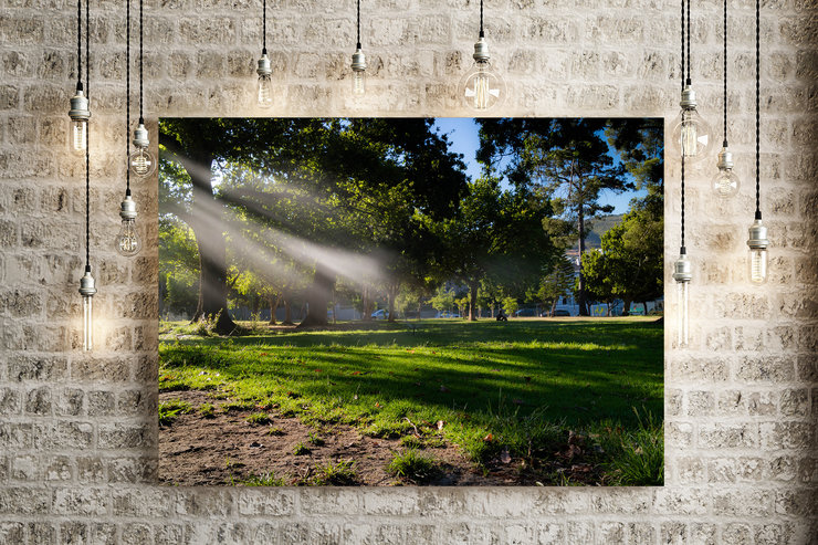 Streaming Sunlight in De Waal Park on Canvas by Vermeulen Photography