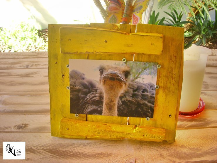 Yellow Ostrich Wood Frame by Skalbeen