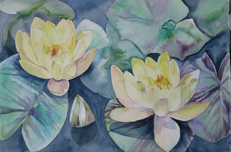 Yellow Water Lilies by Two Generations Creations