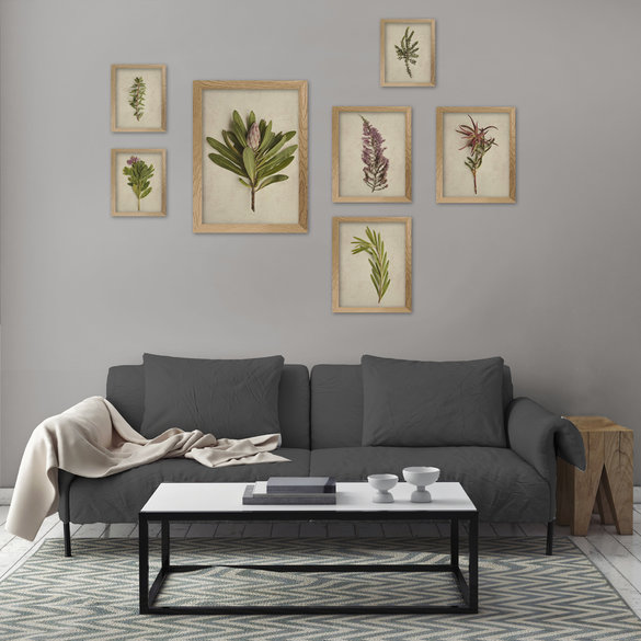 Framed Asymmetrical Botanical Gallery Wall in Natural Wood