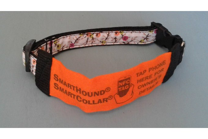 ORANGE SmartCollar for SMALL DOGS