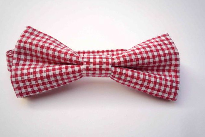 The Inbetweener Pre-tied Bow Tie Red Gingham  by Bow Peep